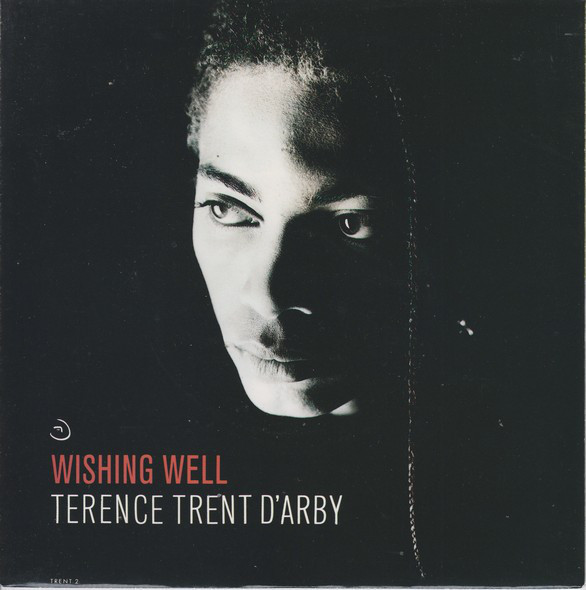 Terence Trent D'Arby – Wishing Well.jpg