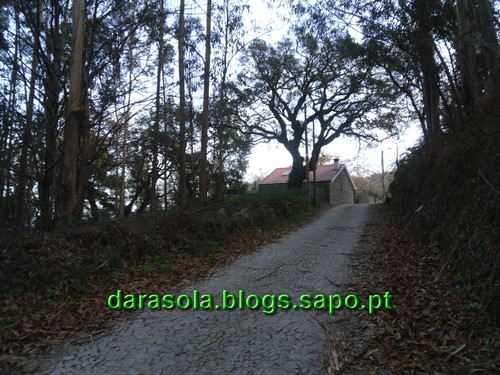 Trilho_Eiras_Famalicao_06.JPG
