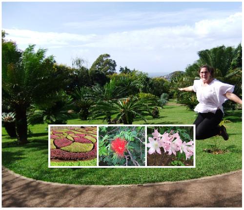Jardim botanico.jpg