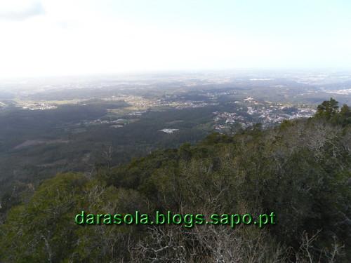 Mata_Bucaco_04.JPG