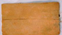 franciscos31jpg.jpg