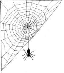 teia de aranha2.jpg