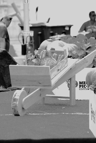 IMG_0756 Mega Pic-nic 2014