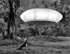 jerry-lewis-visit-to-a-small-planet-1960-2.jpg
