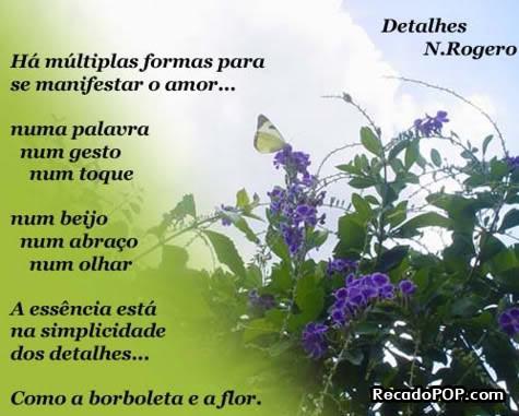 poema borboleta e flor.jpg
