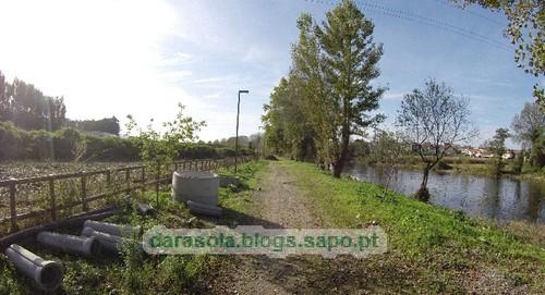 Margens rio Ave Trofa 08.JPG