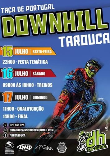 Downhill tarouca