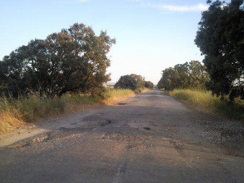 Estrada Municipal 534 - Concelho de Évora