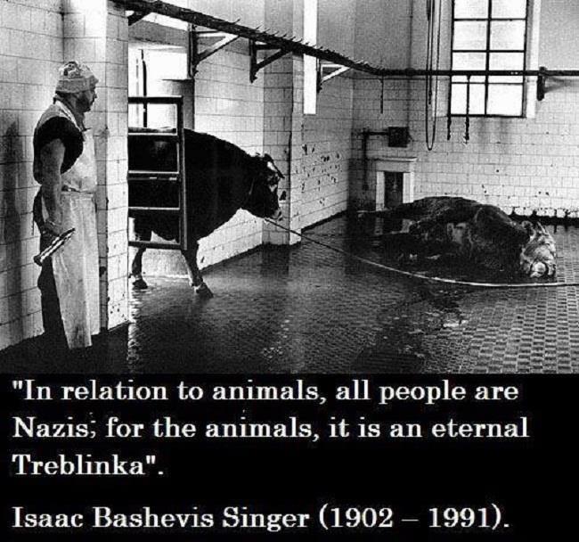 Holocausto animal.jpg