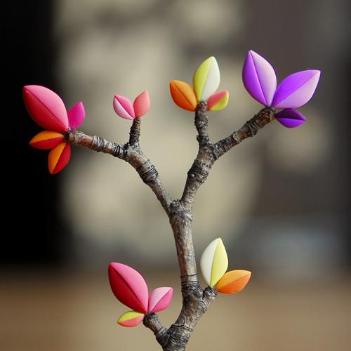 galho-folhas-coloridas.jpg