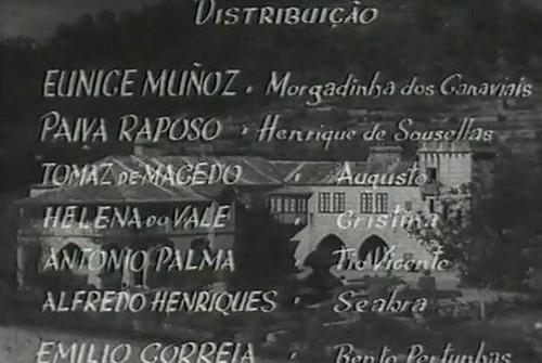Bonucci - Cinema 1.jpg
