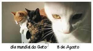 Dia do Gato.jpg
