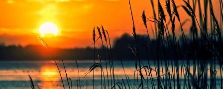 lake-reeds-sunset-landscape_1200x480-pixabay.jpg