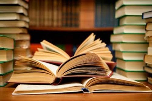 livros-da-biblioteca-da-escola-do-povoado-riacho-s