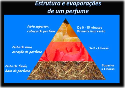 Estrutura de um perfume.png