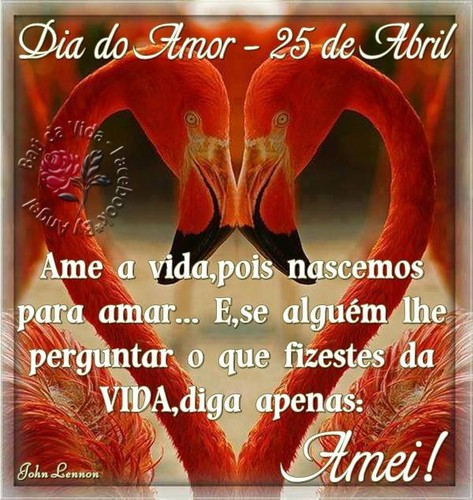 dia-do-amor_011.jpg