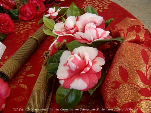 9 - Festa Internacional das Camélias em Celorico