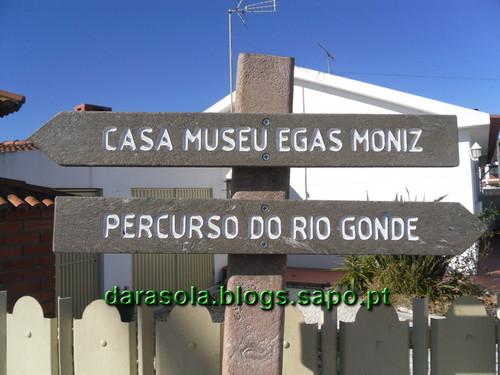 Gonde_Estarreja_01.JPG