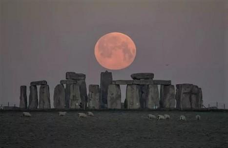 Screenshot_2021-04-27 Stunning pink moon photos sh