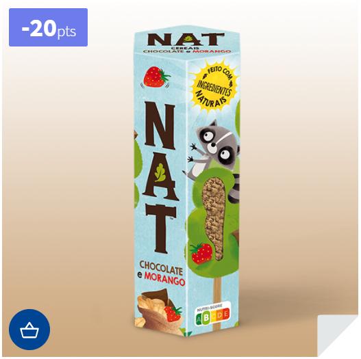 NAT.PNG