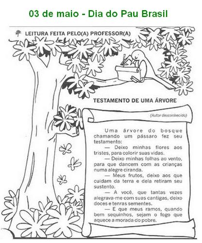 Desenhos E Atividades Dia Do Pau Brasil 03 De Maio O Mundo