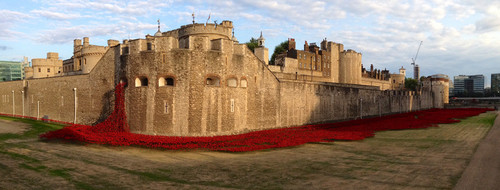 poppy-disaply-tower-of-london-1000x380.jpg
