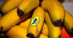 bananamadeira.jpg