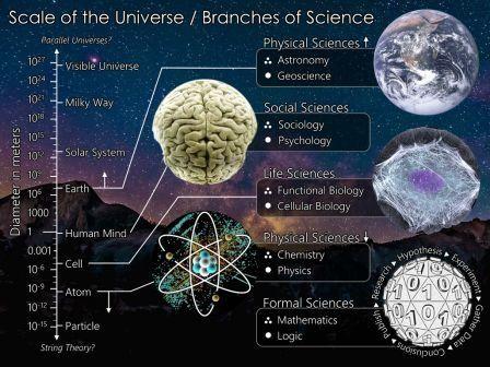 The_Scientific_Universe.jpg