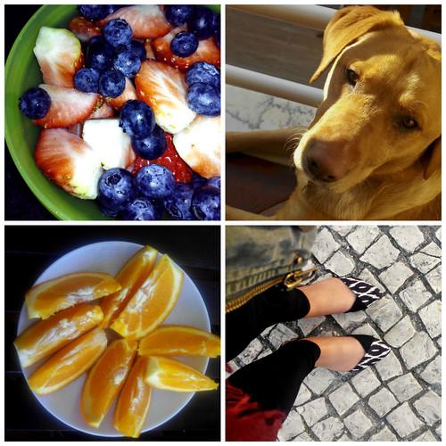 PicMonkey Collage_1.jpg
