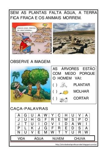 atividades-sobre-desmatamentocincia-3-638.jpg