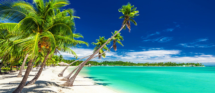 paradise-island.png