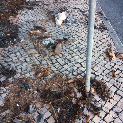 lixo 2.jpg