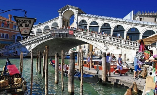 8  the rialto bridge venice.jpg