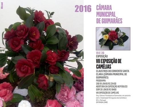 1 - VII Exposição - Guimarães - Março 2016.jpg