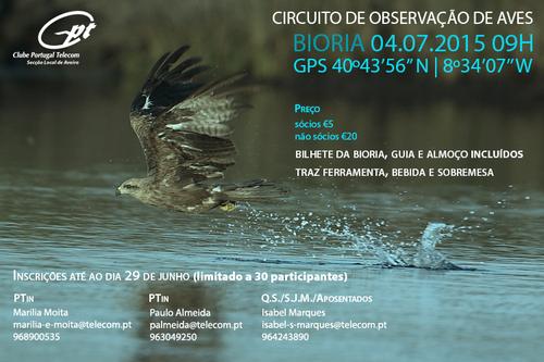 Observação Aves.png