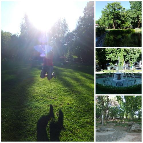 Parque de Viseu.jpg