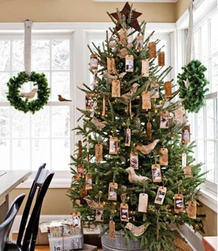 54eb1be84530a_-_christmas-tree-mollica-xl.jpg