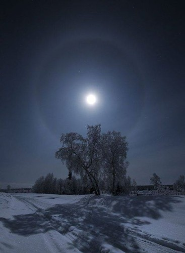 Frosty night, Kola, Russia.jpg