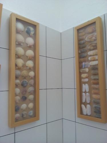 Conchas Exposição Altura 2016. Foto original DAPL jpg