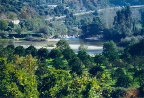Foz do rio Ceira vista do Palácio.jpg