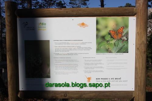 Biodiversidade_Freita_02.JPG