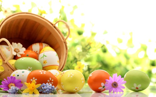 Holidays___Easter_Basket_of_eggs_on_green_backgrou