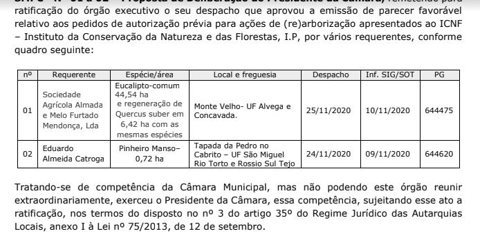 eucaliptos de natal.png