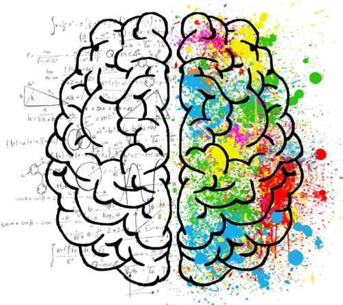 Cerebro=2Partes-Logica+Criativa.jpg