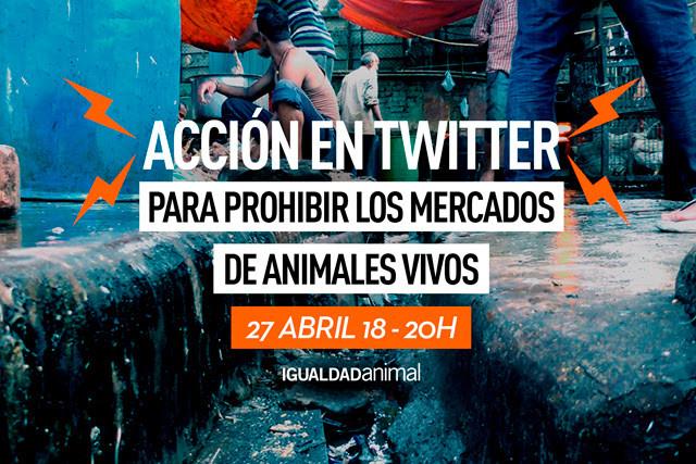 Igualdade animal.jpg