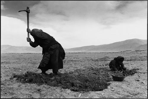 Lu Nan Tibete 2004.jpg