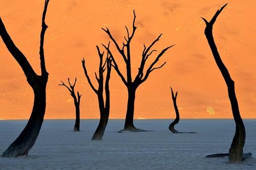 Deserto Namibia.jpg