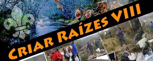 Banner Criar Raízes 2019.jpg
