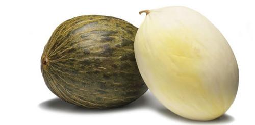 melão-fruta.jpg