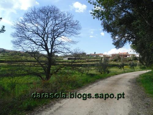Rota_do_Gaia_50.JPG